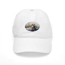 chesapeake Bay Retriever Baseball Cap