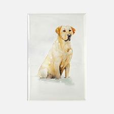 Labrador Retriever & Snowflakes Rectangle Magnet
