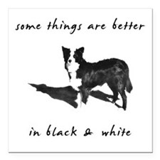 "3-borderCollieBetterBW.png Square Car Magnet 3"" x"