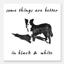 """3-borderCollieBetterBW.png Square Car Magnet 3"""" x"""