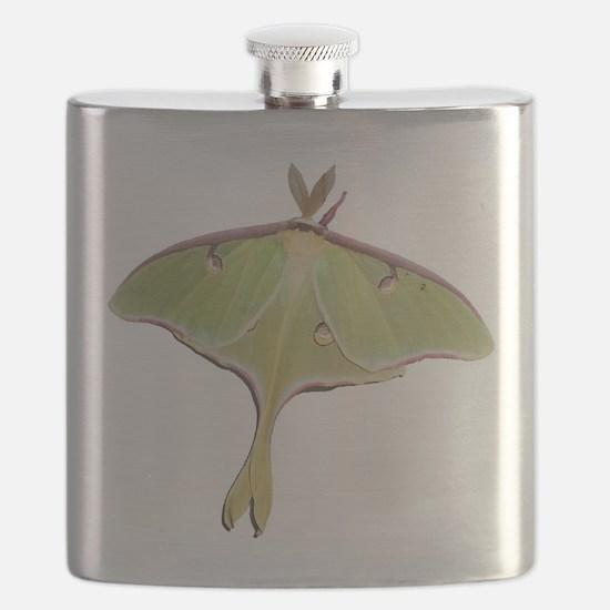 Large Green Moth Flask