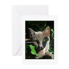 Russian Blue Cat Greeting Card