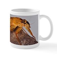 March Brown Nymph Mug