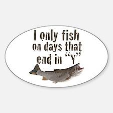 I fish Decal
