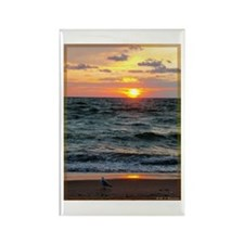 Sunset, seagull, lake, photo Rectangle Magnet