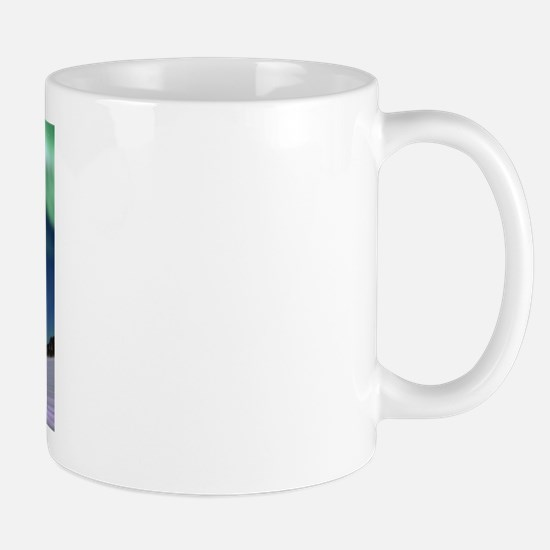 Alaska Aurora Mug