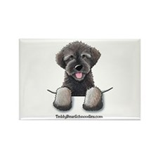 Pocket Wookie Schnoodle Rectangle Magnet