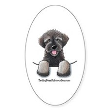 Pocket Wookie Schnoodle Oval Decal