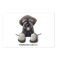 Pocket Wookie Schnoodle Postcards (Package of 8)