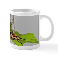 """Late Hex"" Mayfly Mug"