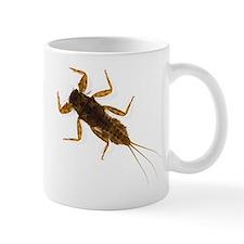<i>Drunella</i> Mayfly Nymph Mug