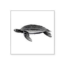 """Leatherback Sea Turtle Square Sticker 3"""" x 3"""""""
