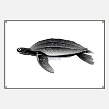 Leatherback Sea Turtle Banner