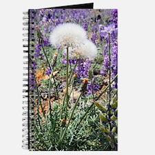 Dandelions in Lupines Journal