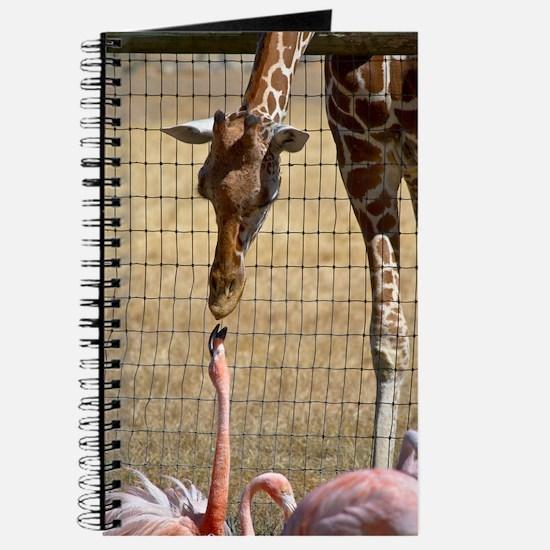 Giraffe and Flamingo Journal