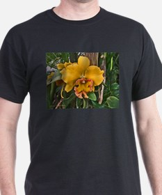 Yellow Cattleya Orchid Black T-Shirt