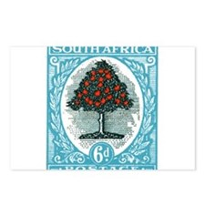 1947 South Africa Orange Tree Postage Stamp Postca