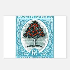 1947 South Africa Orange Tree Postage Stamp Postca