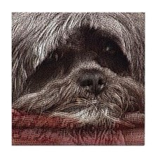 Lhasa Apso Pop Art Blitz Tile Coaster
