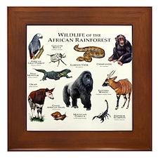 Wildlife of the African Rainforests Framed Tile