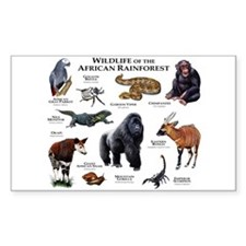 Wildlife of the African Rainforests Decal