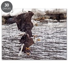 Striking Eagles Puzzle