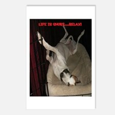 Roaching Greyhound Postcards (Package of 8)