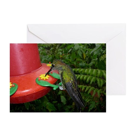 Costa Rica Hummingbirds 2 Greeting Cards (Package
