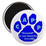 CAPP Magnet