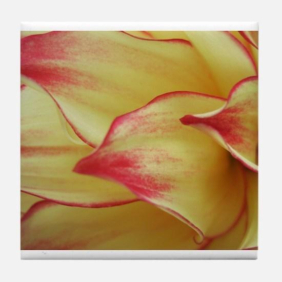 Painted Dahlia Petals Tile Coaster