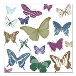 "Butterflies Collage Square Car Magnet 3"" x 3&"
