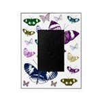 Butterflies Collage Picture Frame