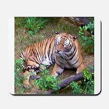 tiger 2 Mousepad