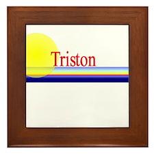 Triston Framed Tile