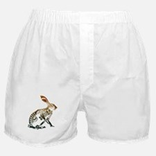 Industrial Hare Boxer Shorts