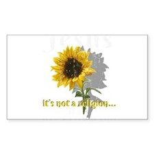 Multiplicity Rocks Note Cards (Pk of 20)
