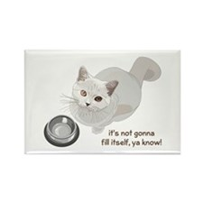 Feed Me Kitty Rectangle Magnet