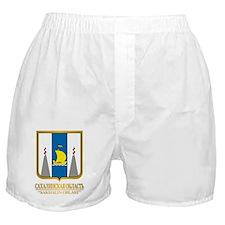 Sakhalin Oblast COA Boxer Shorts