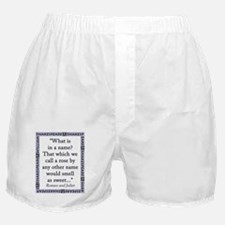 What Is In a Name Boxer Shorts