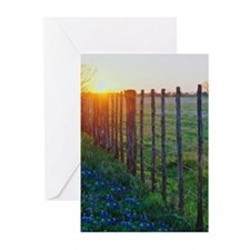 Cool Texas Greeting Cards (Pk of 10)