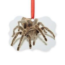 Tarantula Ornament