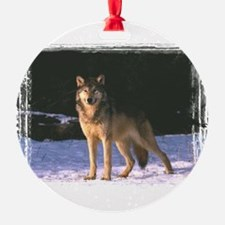 wolf0304h0013.png Ornament