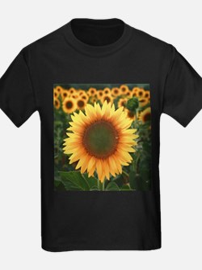 Sunflower T