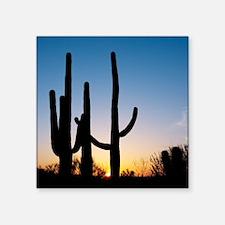 """Arizona Cactus Square Sticker 3"""" x 3"""""""