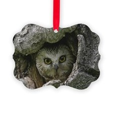 Saw-whet Owl 2 Ornament