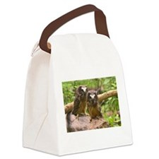 Baby Saw-whet Owls 2 Canvas Lunch Bag