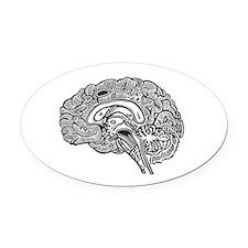 Science Geek Brain Oval Car Magnet