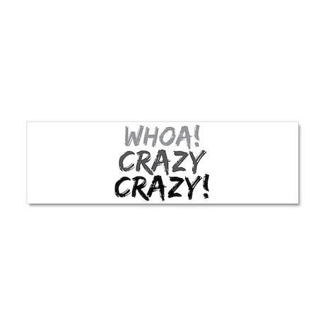Whoa! Crazy Crazy! Car Magnet 10 x 3