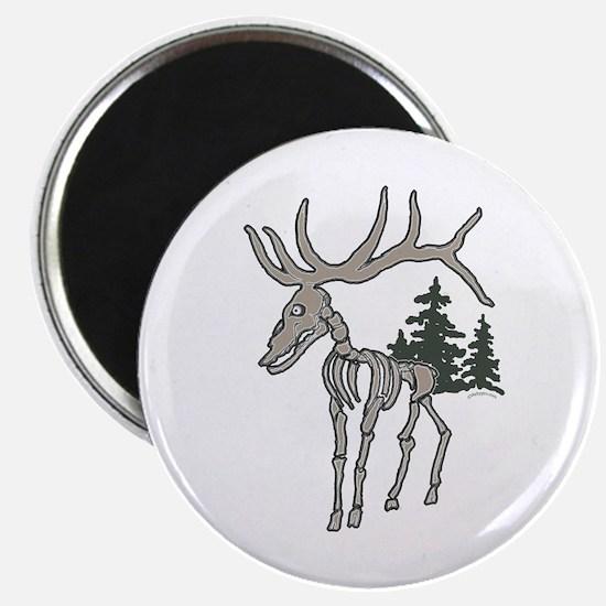 Elk bones Magnet