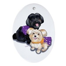 Havanese and Morkie Couple Ornament (Oval)